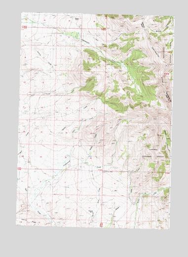 Cottonwood Creek ID Topographic Map  TopoQuest