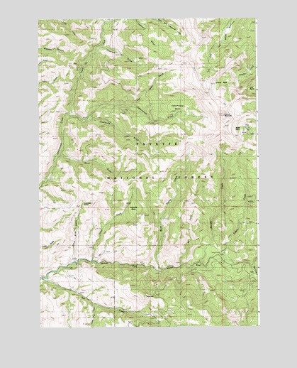 Council Mountain, ID USGS Topographic Map