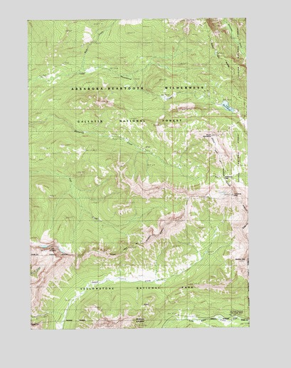 Cutoff Mountain, MT USGS Topographic Map