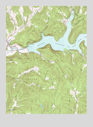 Downsville, NY USGS Topographic Map