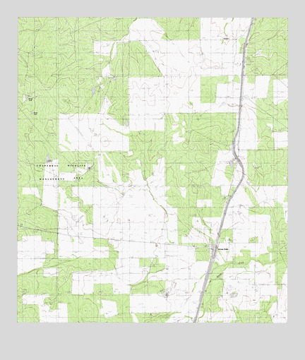 Artesia Wells, TX USGS Topographic Map
