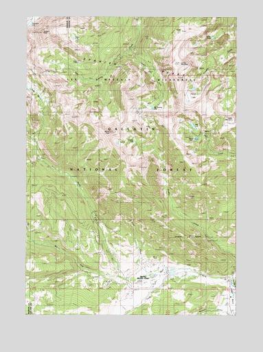 Gallatin Peak MT Topographic Map TopoQuest - Montana topo map