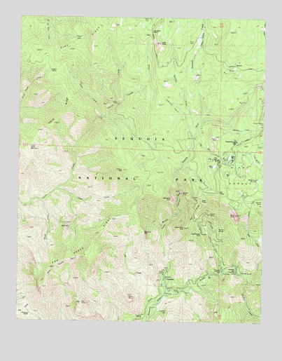 Giant Forest, CA USGS Topographic Map