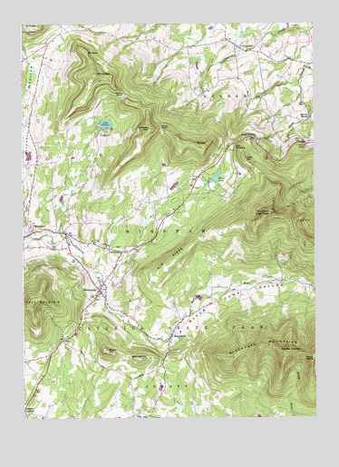 Hensonville, NY USGS Topographic Map