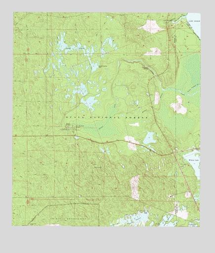 Topo Map Florida.Juniper Springs Fl Topographic Map Topoquest