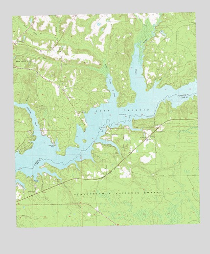 Lake Talquin, FL USGS Topographic Map