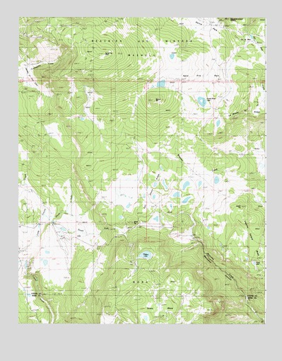 Agua Fria Peak, NM USGS Topographic Map