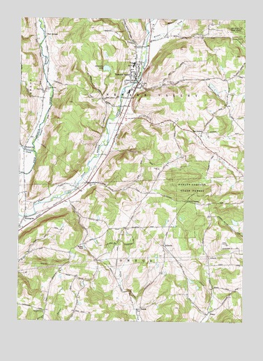 Newark Valley, NY USGS Topographic Map