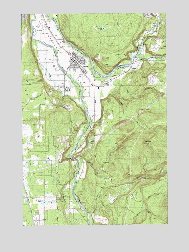 Orting, WA USGS Topographic Map