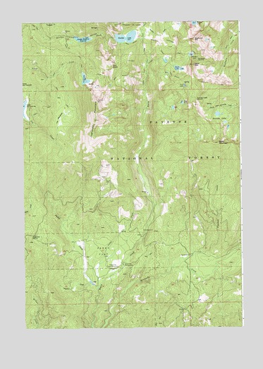 Paddy Flat, ID USGS Topographic Map