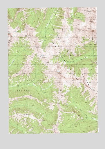 Pilot Peak, WY USGS Topographic Map