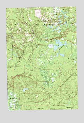 Betsy Lake Sw Mi Topographic Map Topoquest