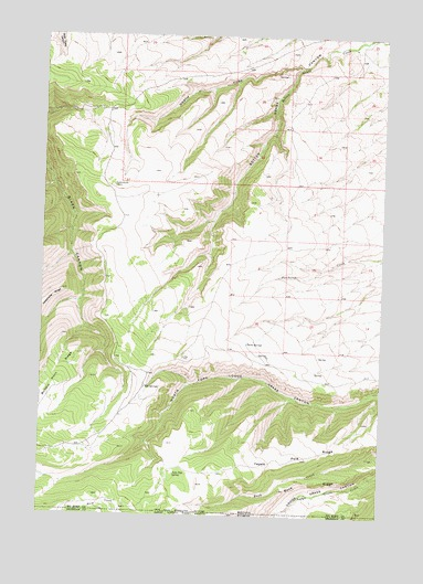 Red Springs, MT USGS Topographic Map
