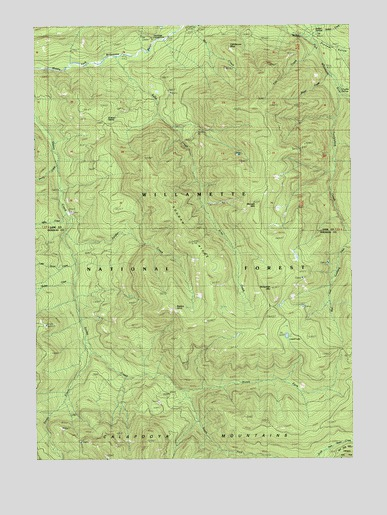 Rigdon Point, OR USGS Topographic Map