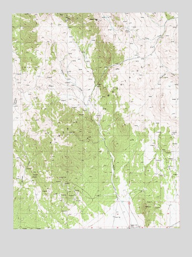 Roberts Creek Mountain, NV USGS Topographic Map