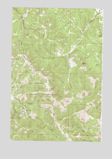 Rogers Pass, MT USGS Topographic Map