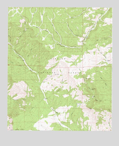 Rogers Ruins, NM USGS Topographic Map