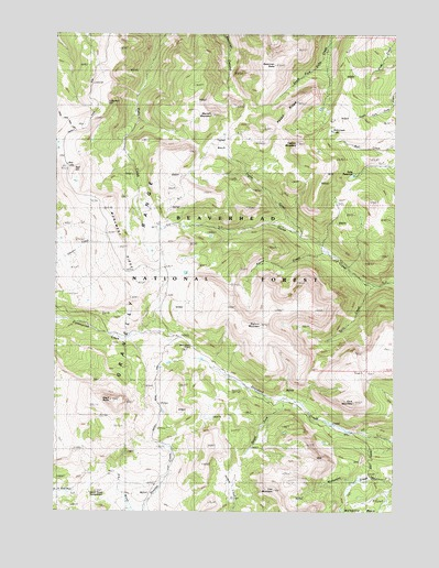 Big Horn Mountain, MT Topographic Map - TopoQuest