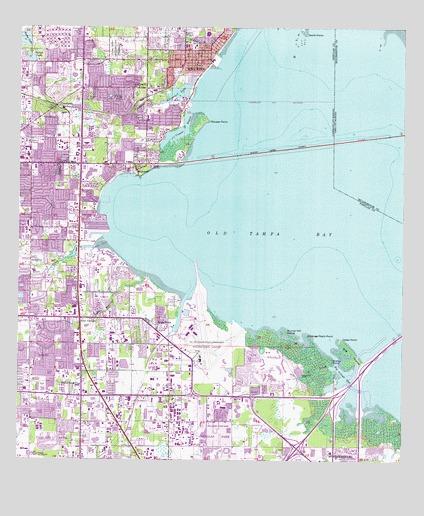 Largo Fl Elevation Map.Safety Harbor Fl Topographic Map Topoquest