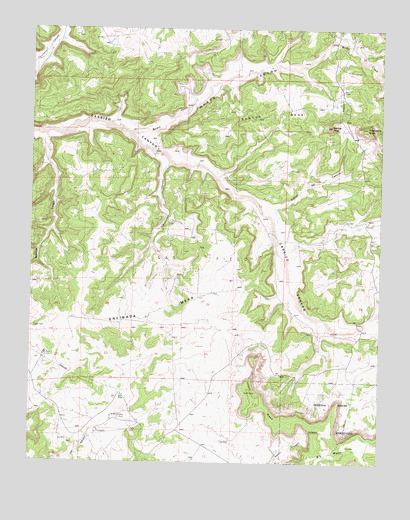 Santos Peak, NM USGS Topographic Map