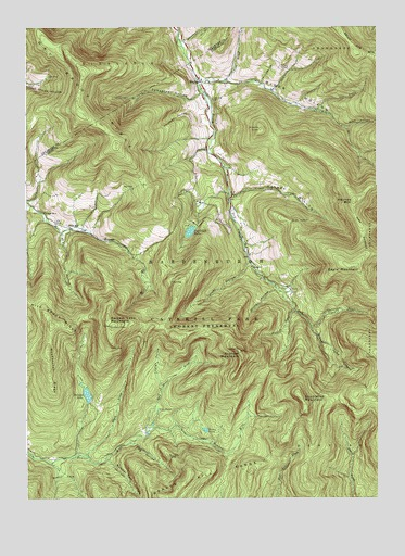 Seager, NY USGS Topographic Map