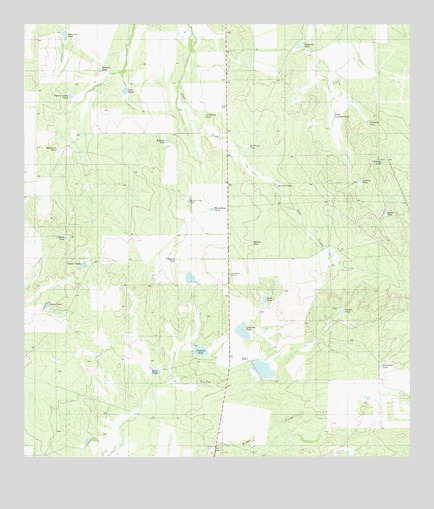 Shipp Ranch, TX USGS Topographic Map
