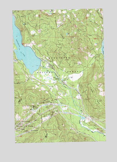 Stampede Pass, WA USGS Topographic Map