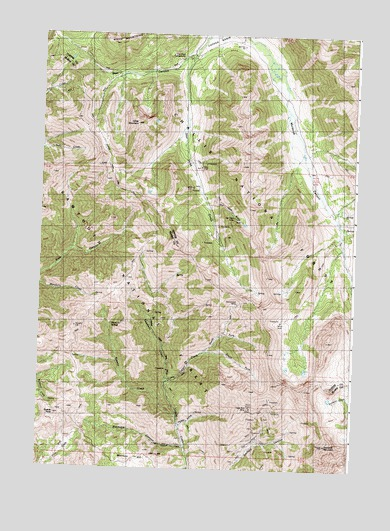 Star Hope Mine, ID USGS Topographic Map