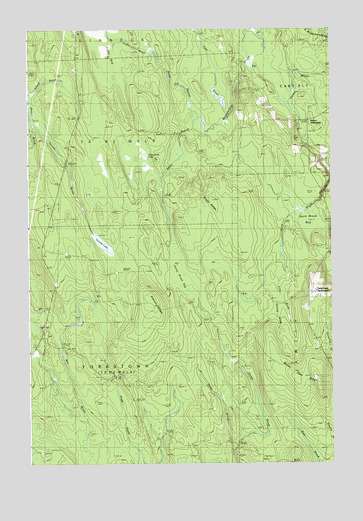 Ten Mile Lake, ME USGS Topographic Map