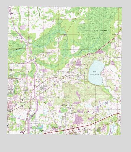 Thonotosassa, FL Topographic Map   TopoQuest