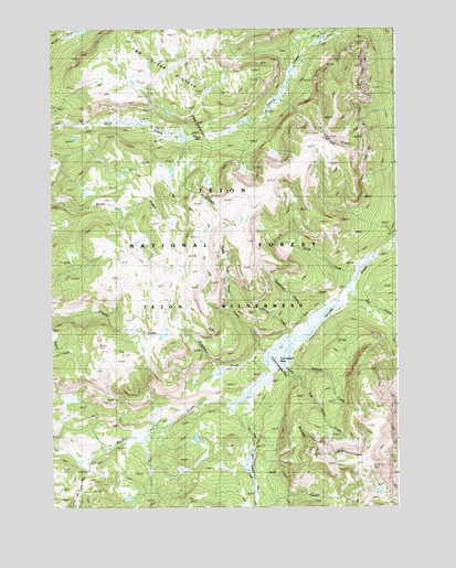 Two Ocean Pass, WY USGS Topographic Map