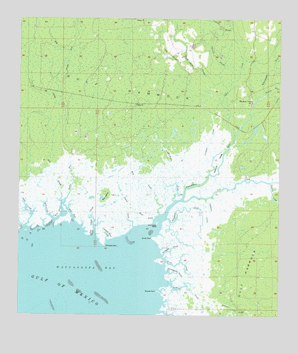 Waccasassa Bay, FL USGS Topographic Map
