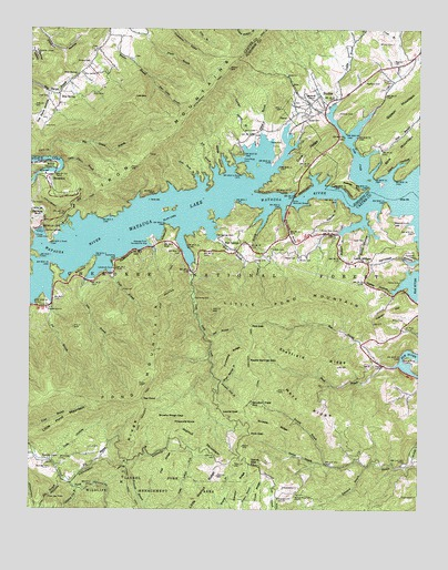 Watauga Dam, TN USGS Topographic Map