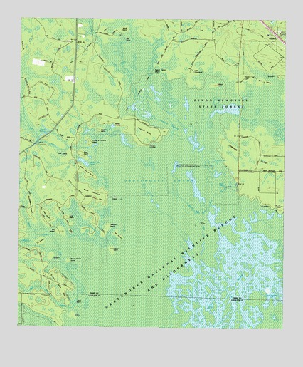Waycross SE, GA USGS Topographic Map