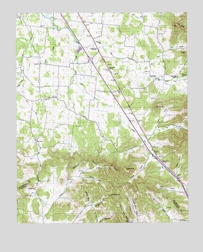 Webbs Jungle, TN USGS Topographic Map