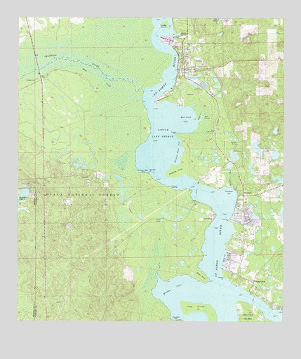 Welaka Fl Topographic Map Topoquest