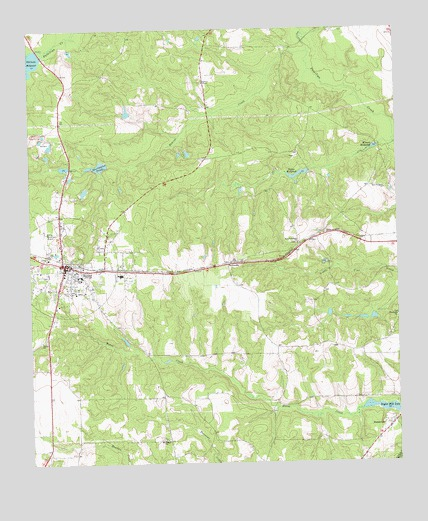 Butler East, GA USGS Topographic Map