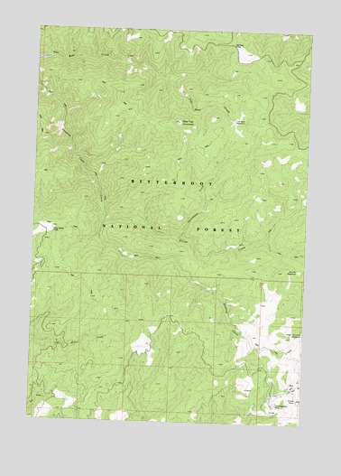 Bald Top Mountain, MT USGS Topographic Map