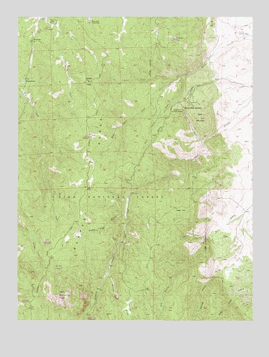 Devils Head, CO USGS Topographic Map