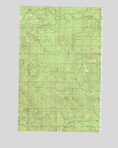 Mount Leona, WA USGS Topographic Map