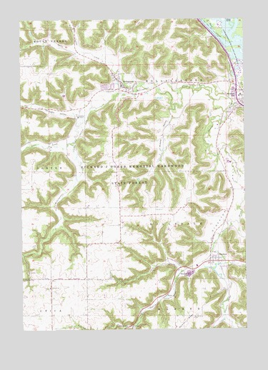 Rollingstone, MN USGS Topographic Map