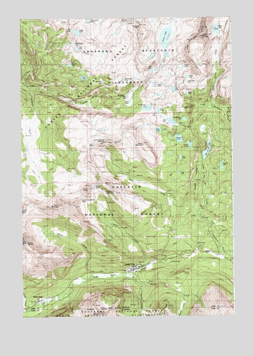 Cooke City, MT USGS Topographic Map