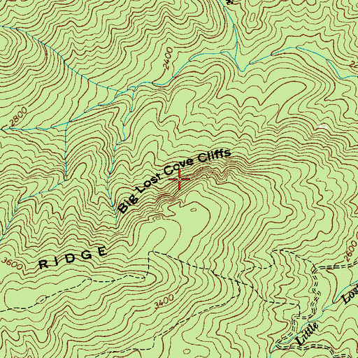 Topographic Map of Big Lost Cove Cliffs, NC