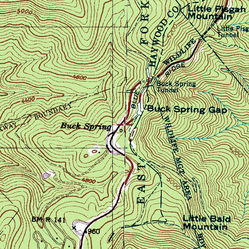 Topographic Map of Buck Spring, NC