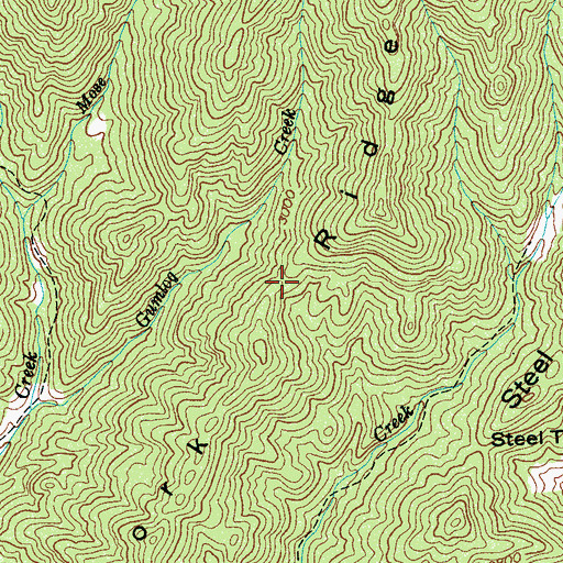 Topographic Map of Fork Ridge, NC