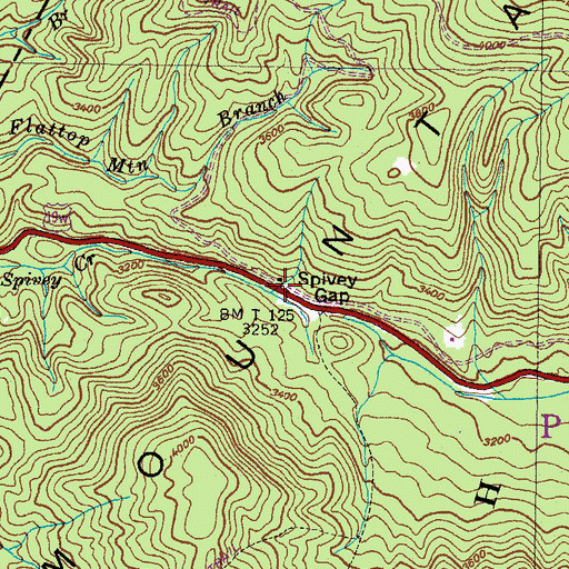 Topographic Map of Spivey Gap Picnic Area, NC