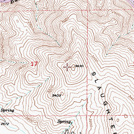 Topographic Map of Slaughterhouse Range, OR