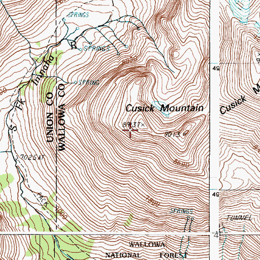 Topographic Map of Cusick Mountain, OR