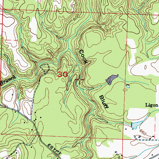 Topographic Map of Cook Bluff, AL