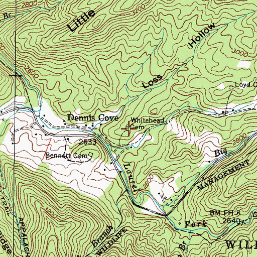 Topographic Map of Whitehead Cemetery, TN